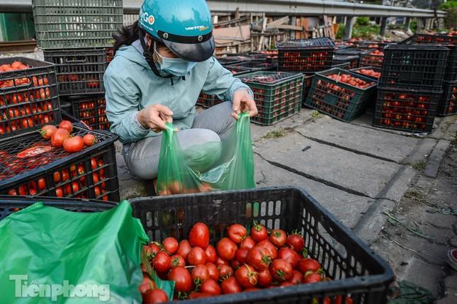 Người dân Thủ đô nườm nượp đến 'giải cứu' nông sản cho Hải Dương ảnh 3