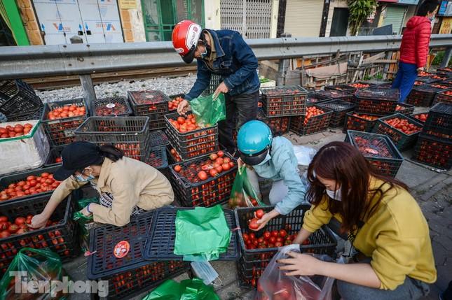 Người dân Thủ đô nườm nượp đến 'giải cứu' nông sản cho Hải Dương ảnh 9