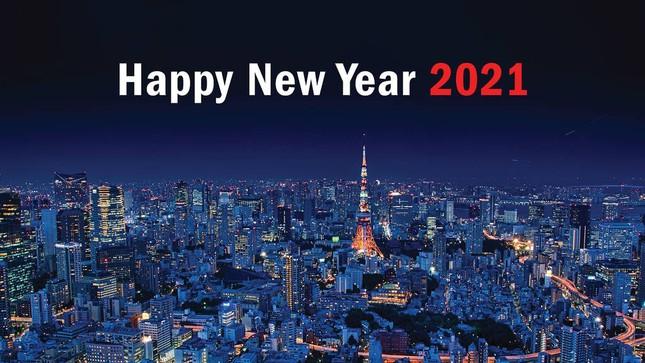 Việt Nam bước sang năm mới 2021 ảnh 21