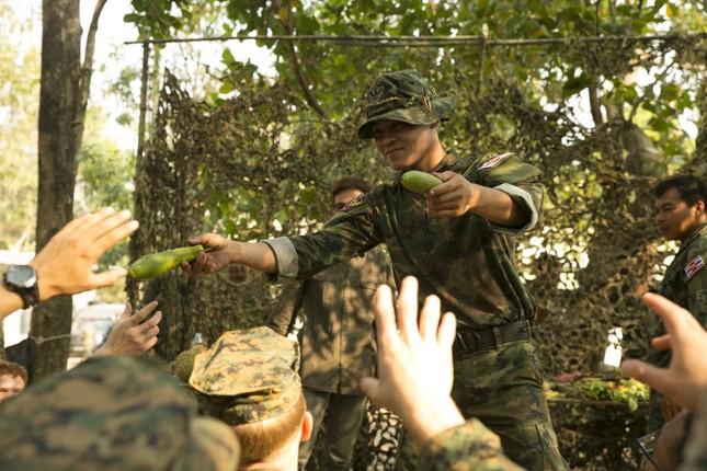 Lính Mỹ học cách ăn sống bọ cạp để tồn tại trong rừng ảnh 3