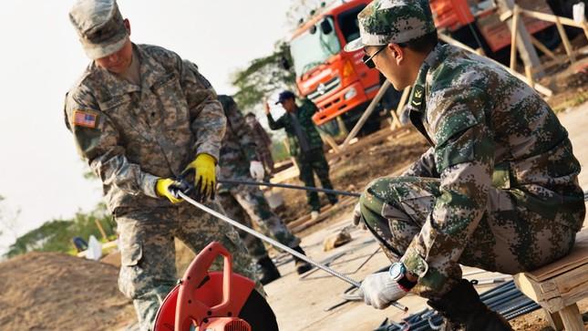 Lính Mỹ học cách ăn sống bọ cạp để tồn tại trong rừng ảnh 6