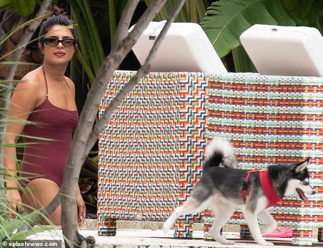 Hoa hậu Priyanka Chopra sexy với áo tắm lọt ống kính giới săn ảnh ảnh 5