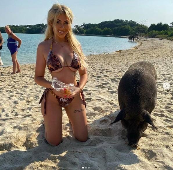 Chloe Ferry chụp ảnh bikini nóng bỏng cùng heo ở biển ảnh 3