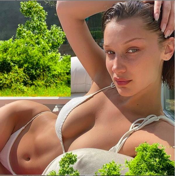 Bella Hadid tung ảnh mặc bikini nhỏ xíu, tắm nắng khi ở nhà vì COVID-19 ảnh 1