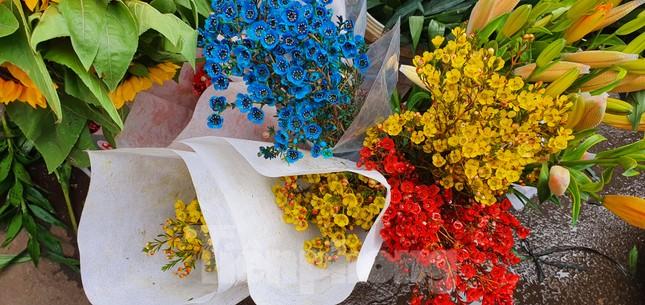 Độc đáo 'hoa nghìn nụ' được người dân đất Cảng săn đón dịp tết ảnh 9