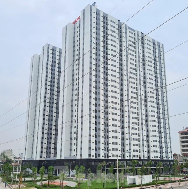 Cận cảnh những khu 'đất vàng' thanh toán cho dự án BT cải tạo chung cư ở Hải Phòng ảnh 1