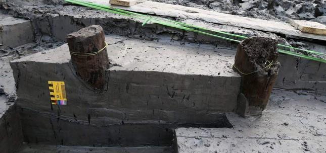 Thêm 37 cọc gỗ phát lộ được nhận định liên quan đến trận Bạch Đằng ảnh 8