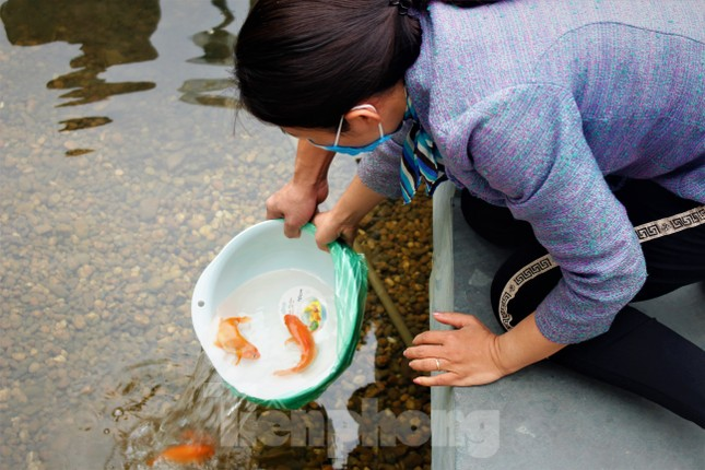 Hạ Long: Cá chép tăng giá, dân dùng cá giấy tiễn ông Táo về trời ảnh 6