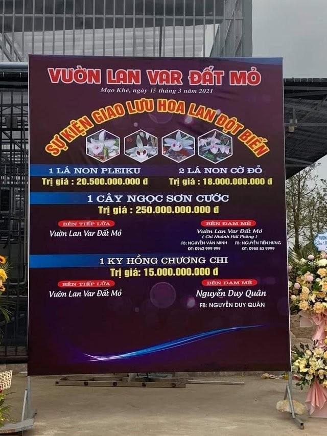 Công an vào cuộc vụ bán lan đột biến 250 tỷ đồng ở Quảng Ninh ảnh 3