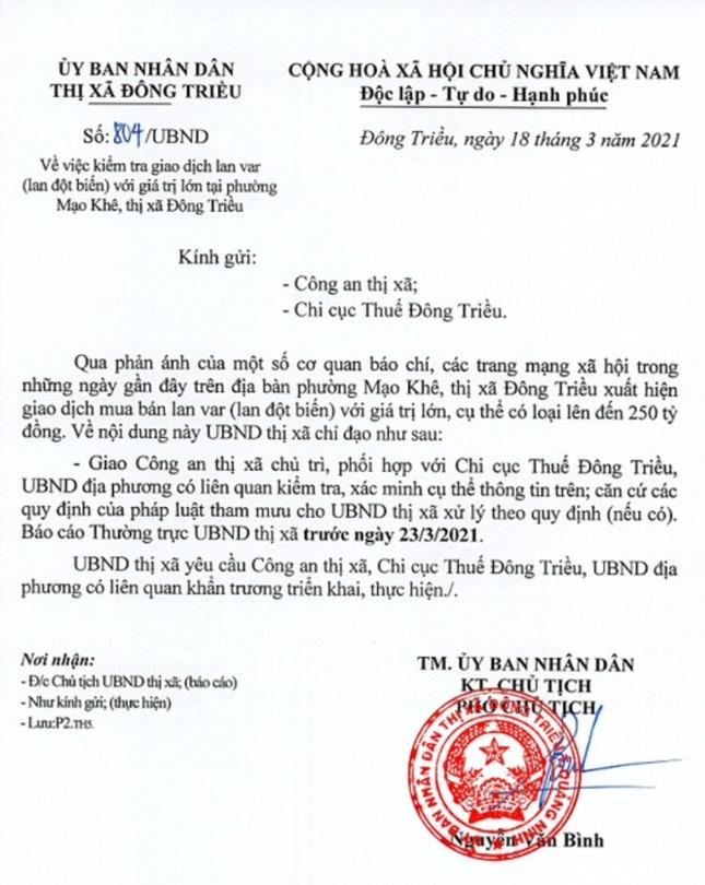 Công an vào cuộc vụ bán lan đột biến 250 tỷ đồng ở Quảng Ninh ảnh 1