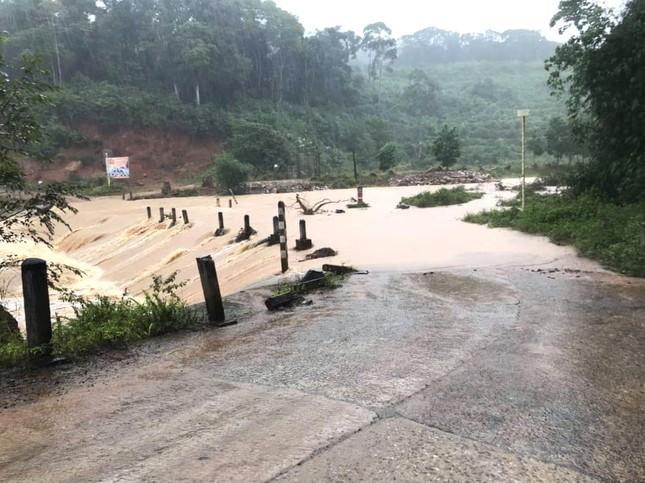 Đã có người tử vong do bão số 9 ở Gia Lai - Kon Tum ảnh 5
