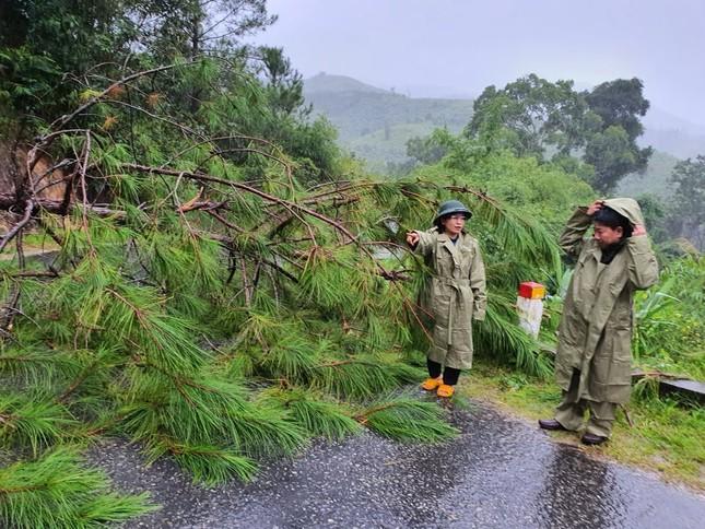 Đã có người tử vong do bão số 9 ở Gia Lai - Kon Tum ảnh 2