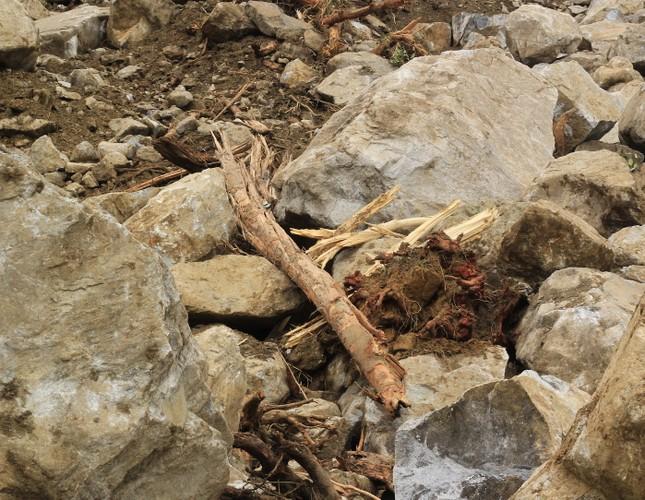 Cận cảnh những tảng đá nặng hơn trăm tấn sạt lở ở Kon Tum ảnh 9