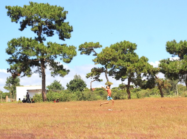 Đổ xô tới ngọn đồi bị loại cỏ 'nhuộm' màu hồng quyến rũ ảnh 3