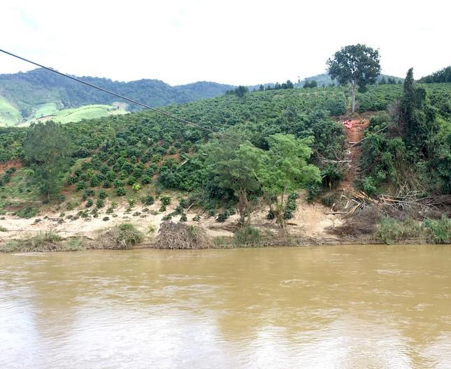 Những người dân 'làm xiếc' đu dây qua sông Pô Cô mưu sinh ảnh 3