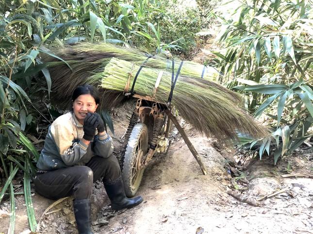 Cận Tết, người dân miền núi Gia Lai đổ xô kiếm 'lộc trời' ảnh 4