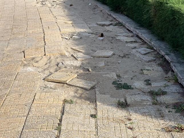 Công viên biển tiền tỉ ở Ninh Thuận hư hỏng ra sao? ảnh 2