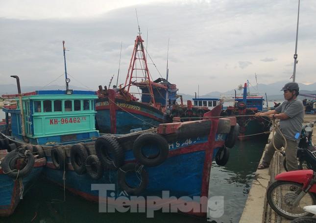 Hàng trăm tàu cá Khánh Hoà vào bờ neo đậu tránh bão số 5 ảnh 1