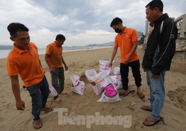 Dân Nha Trang ra biển xúc cát về chống bão ảnh 4