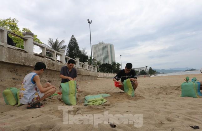 Dân Nha Trang ra biển xúc cát về chống bão ảnh 1