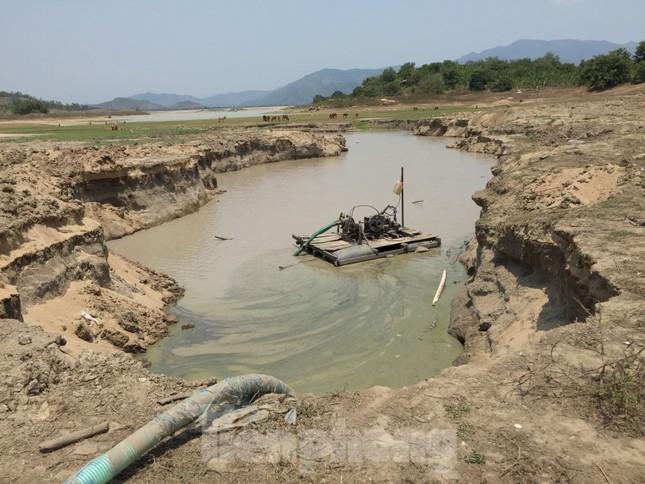 Hồ thuỷ lợi Khánh Hoà tan hoang vì 'cát tặc' ảnh 3
