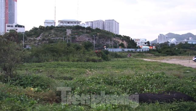 Khánh Hoà yêu cầu thu hồi siêu dự án 33 triệu đô lấn Vịnh Nha Trang ảnh 5