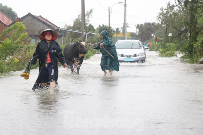 Nước lũ dâng cao, nhiều khu dân cư ở Phú Yên bị chia cắt ảnh 1
