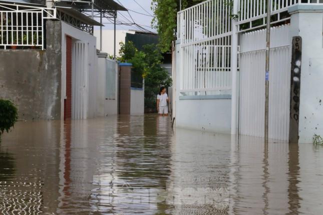 Bão tan nhưng dân phố biển Nha Trang vẫn bì bõm nơi nước ngập ảnh 3