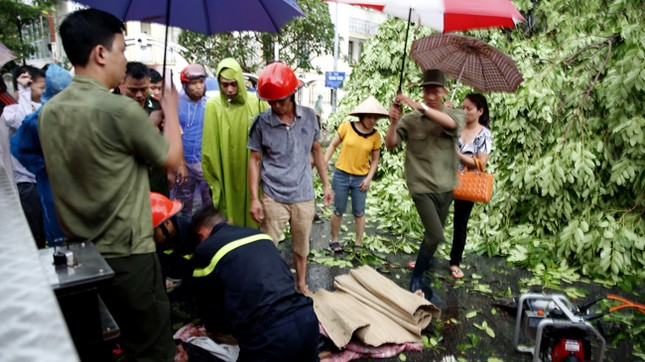 Hà Nội: Dông lốc kinh hoàng, hàng trăm cây đổ trong ít phút ảnh 6