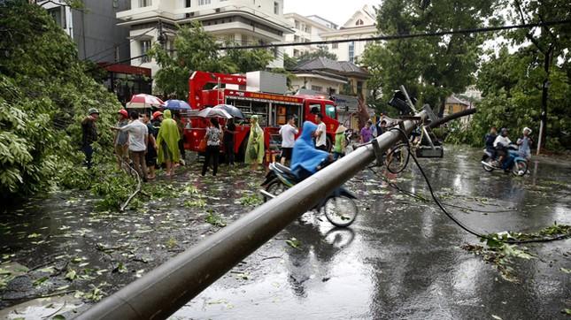 Hà Nội: Dông lốc kinh hoàng, hàng trăm cây đổ trong ít phút ảnh 3