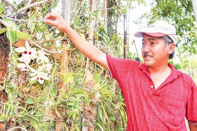 Lạc giữa bộ sưu tập lan rừng lớn nhất Việt Nam ảnh 1