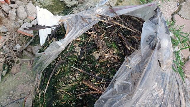 Hà Nội: Người dân khốn khổ vì rác thải 'bủa vây' hầm đường bộ ảnh 3