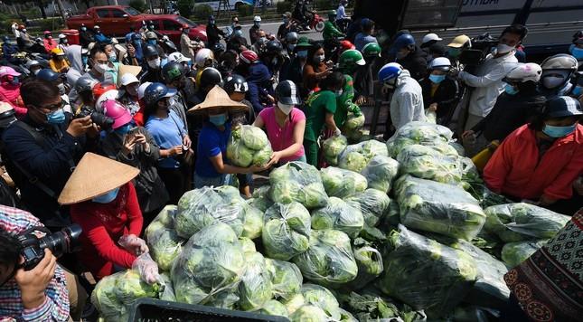 Giải cứu nông sản cho người dân vùng dịch, vẫn cần tuân thủ biện pháp phòng dịch ảnh 2