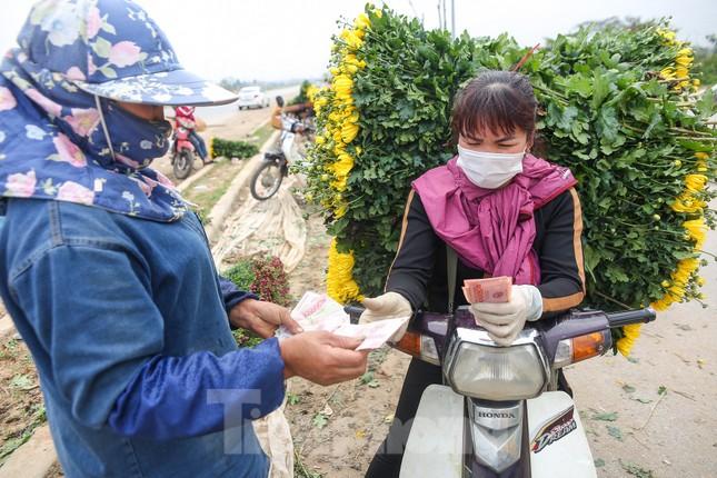 Rằm tháng Giêng, làng Tây Tựu lo 'sốt vó' vì hoa ế ẩm ảnh 8
