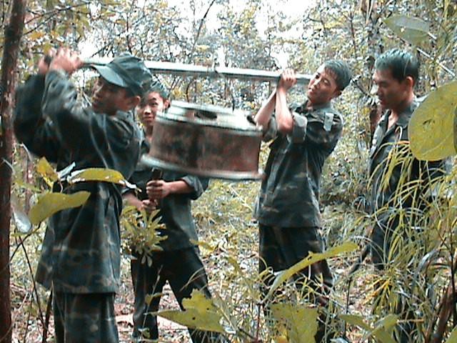 Đắk Lắk: Voi rừng liên tục 'ghé thăm', phá hoại hoa màu ảnh 2