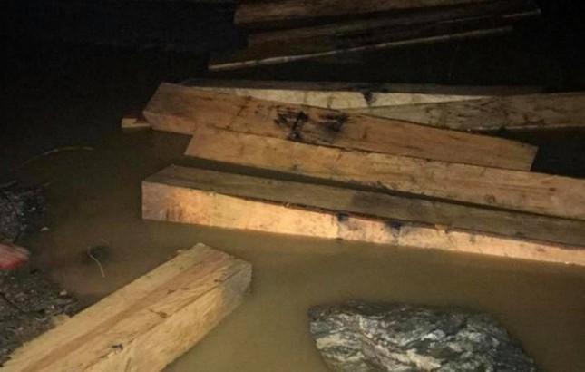 Đắk Lắk liên tiếp phát hiện nhiều bãi tập kết gỗ 'vô chủ' ảnh 2