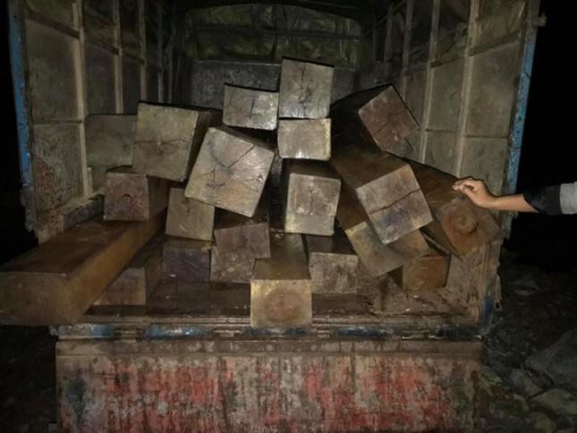 Đắk Lắk liên tiếp phát hiện nhiều bãi tập kết gỗ 'vô chủ' ảnh 1