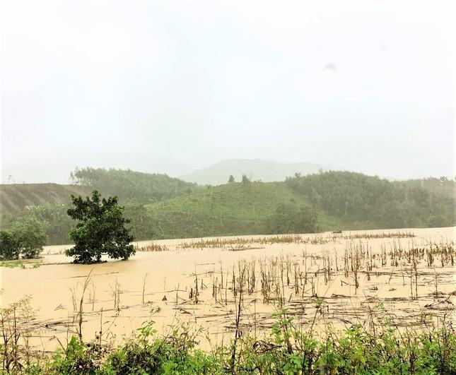 Đắk Lắk mưa to, lên phương án đưa dân khỏi vùng nguy cơ lở đất, lũ quét ảnh 2