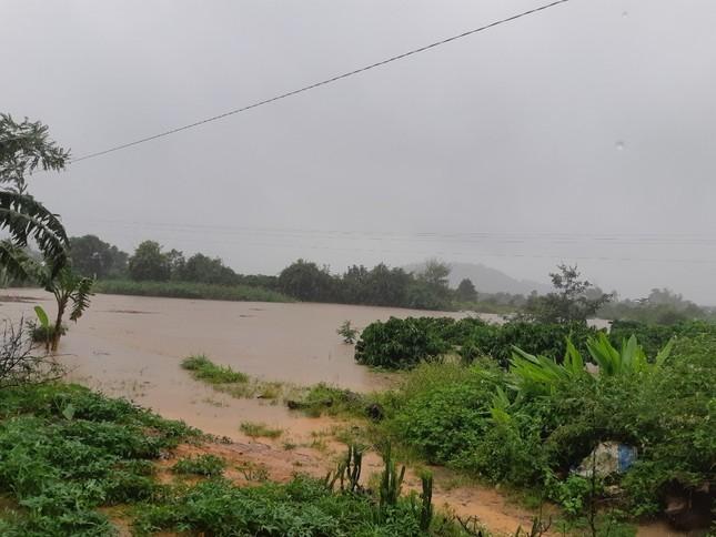 Xung kích phản ứng nhanh chốt trực các điểm mưa bão ngập ở Đắk Lắk ảnh 3
