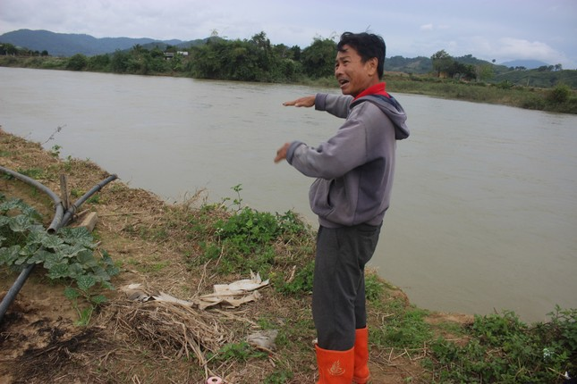 Bất lực nhìn sông Krông Nô 'ngoạm' đất trồng trọt nghiêm trọng ảnh 6