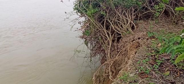 Bất lực nhìn sông Krông Nô 'ngoạm' đất trồng trọt nghiêm trọng ảnh 4