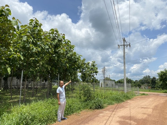 Bóc mẽ loạt dự án điện mặt trời 'núp bóng' nông nghiệp được hợp thức hóa ảnh 3