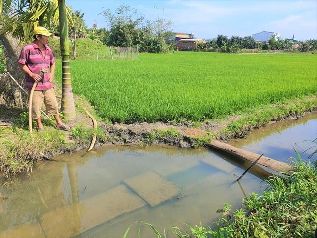 Đắk Lắk: Dân vét nước tưới bên kênh thủy lợi chục tỷ bỏ hoang ảnh 1