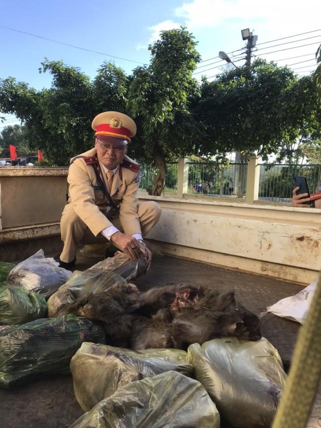 Đắk Lắk: Bắt đối tượng chở cả bao tải khỉ đã chết ảnh 1