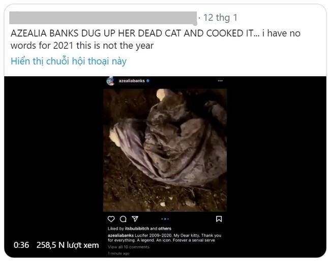 Rapper người Mỹ gây 'sốc' khi đào con mèo đã chết để…nấu súp ảnh 1
