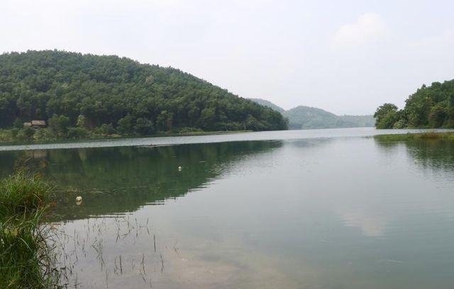Hòa Bình 'đòi lại' hồ Đầm Bài sau vụ ô nhiễm nguồn nước sạch sông Đà ảnh 2