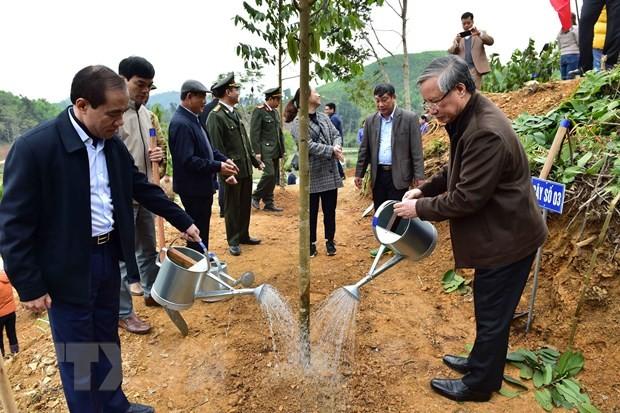 Thường trực Ban Bí thư dự Lễ phát động Tết trồng cây tại Tuyên Quang ảnh 1