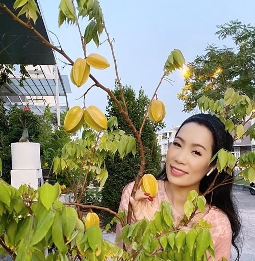 Phát 'sốt' với vườn cây xanh mướt trong biệt thự sang trọng của Trịnh Kim Chi ảnh 7