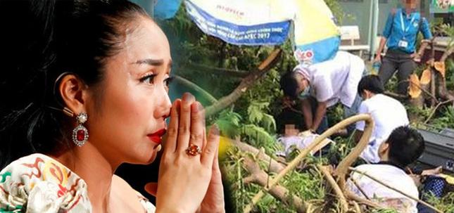 Showbiz 27/5: Việt kiều Canada nói dối đã ly hôn trong show hẹn hò truyền hình ảnh 2