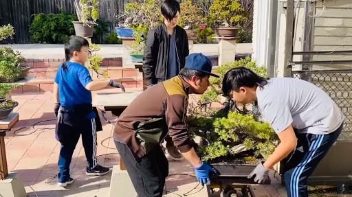 'Lóa mắt' với vườn cây sai trĩu quả của Bằng Kiều ở Mỹ ảnh 12